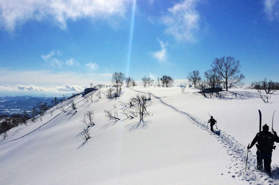 From Hokkaido To Kyushu, This Is The Ski Resort To Appreciate The Winter In Japan